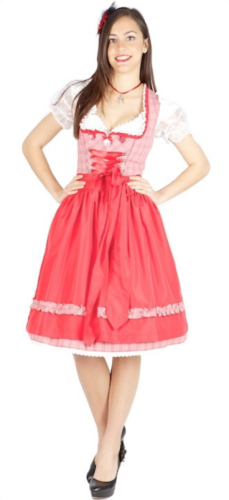 8882 kr ger madl 60er dirndl rot weiss kariert dirndl. Black Bedroom Furniture Sets. Home Design Ideas