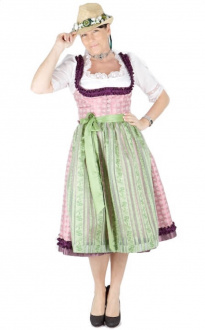10374 Hofer Dirndl Prag 70er rose